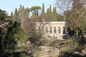Botanic Garden, Montpellier